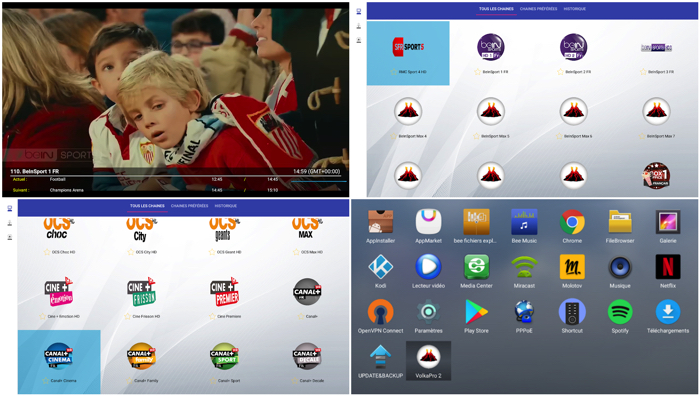 Iptv Illgale: or How to Access 1400 Tv Channels and 1600 Vod Movies for 25 Euros Per Year