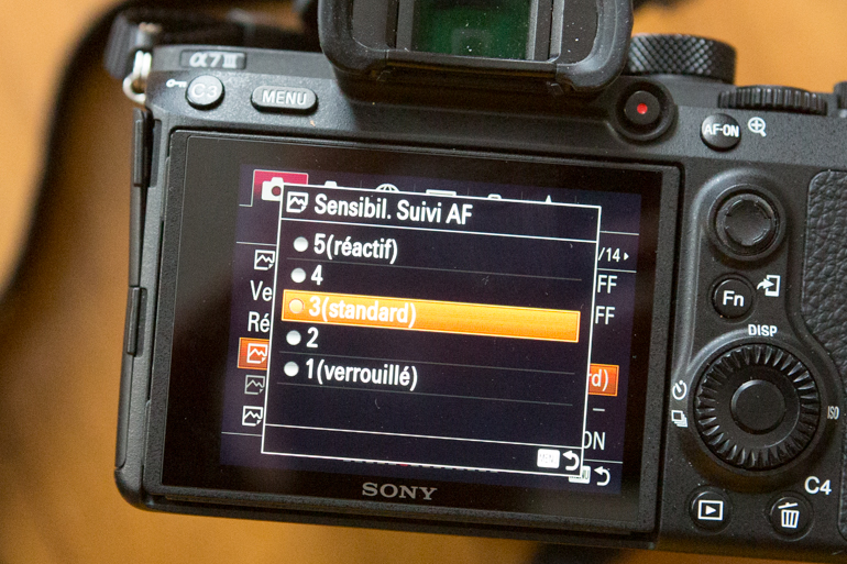 Test of the Sony A7 Iii: Once Tamed, It Obtains on the Finger and the It